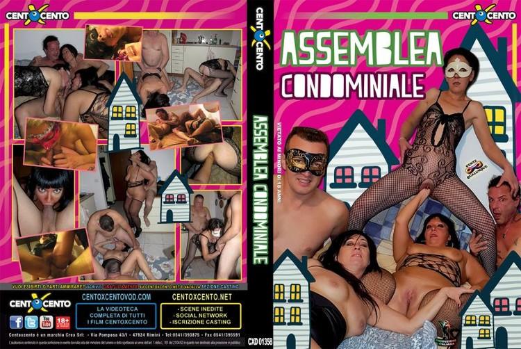 Assemblea Condominiale (2017)